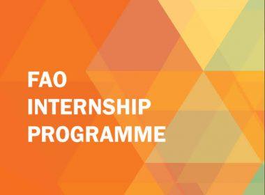 FAO Internship Programme