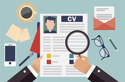 CV samples for jobs application
