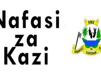 Nafasi za kazi Zanzibar