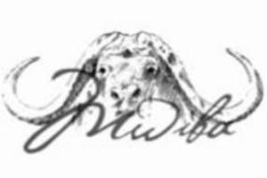 Mwiba Holdings Limited