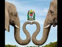 Wizara ya mali asili na utalii Tanzania