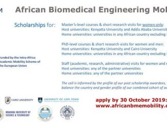 The African Biomedical Engineering Mobility (ABEM) Scholarships